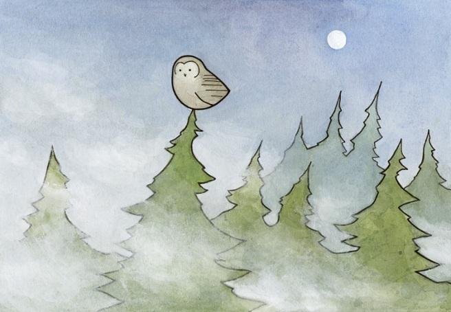 owl and fog