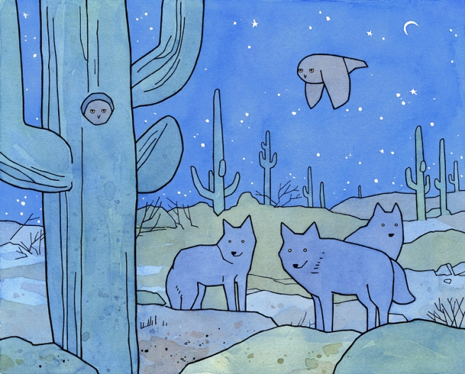 owls coyotes desert drawing