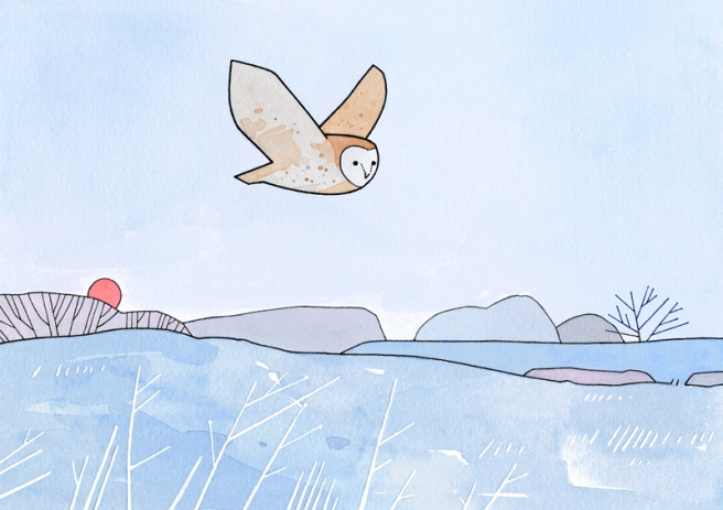 barn owl frost illustration