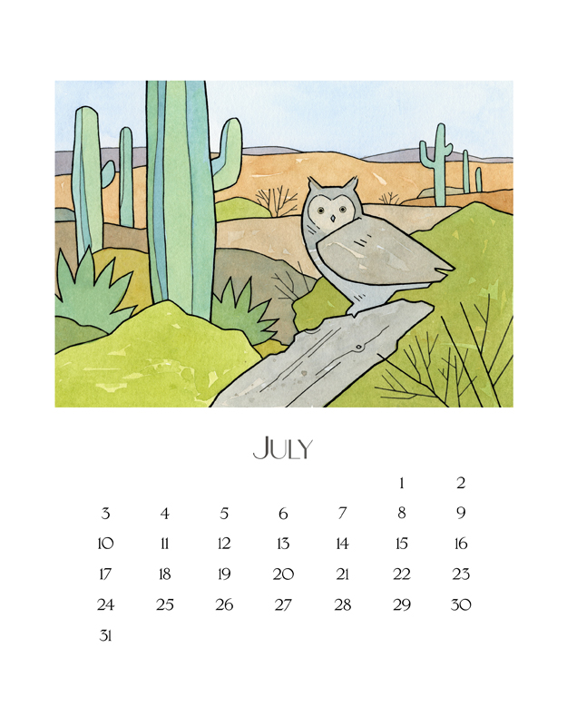 illustrated owl calendar 2016