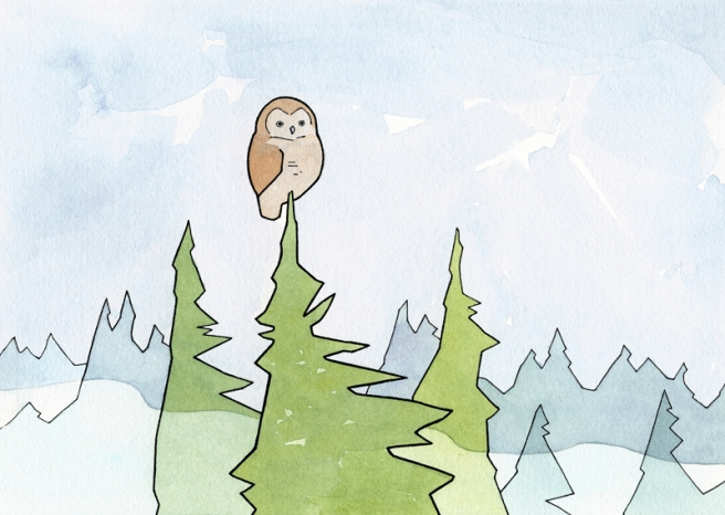 owl fog illustration